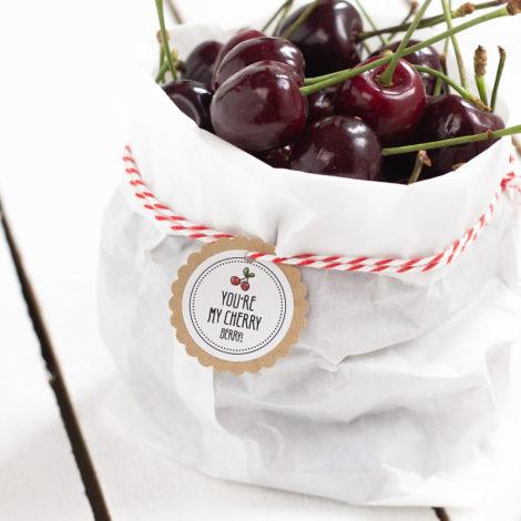 Obststicker You're my cherry berry Kirschen Kleine Papeterie