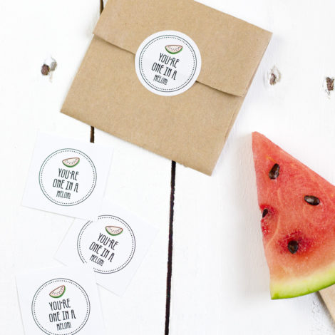 Obststicker You're one in a melon Kleine Papeterie